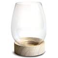 Glass Vase With Wood